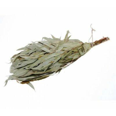 Szaunavirgács, eukaliptusz